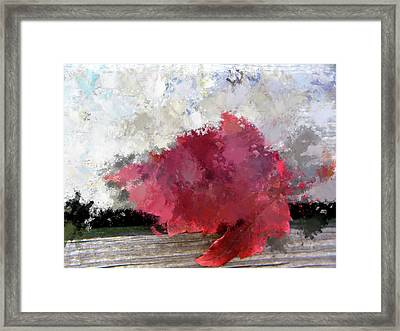 Abstract Bright Red Leaf Framed Print