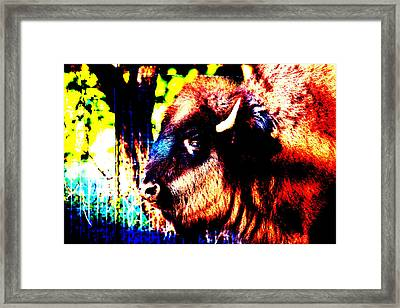 Abstract Buffalo Framed Print by Lon Casler Bixby