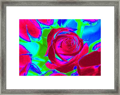Burgundy Rose Abstract Framed Print
