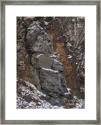 Abstract By Nature Framed Print by Reb Frost