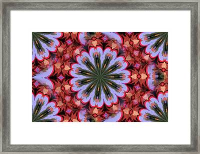 Abstract By Paint Pro  # 34 Framed Print