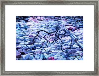 Abstract Claw Driftwood And Cobblestones At Cobblestone Beach, Acadia National Park Framed Print