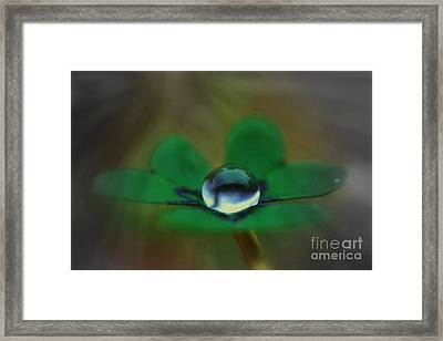 Abstract Clover Framed Print