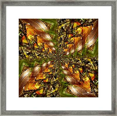 Abstract Cornfield 1 Framed Print