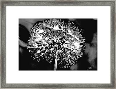 Abstract Dandelion Framed Print