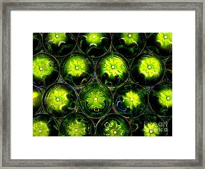 Abstract Digital Art Bubbles Flowers Framed Print by Adriano Pecchio