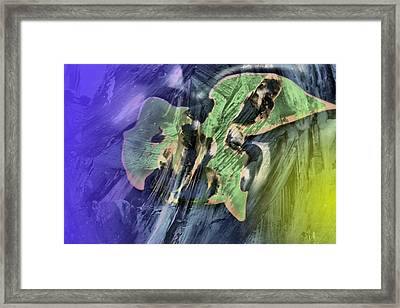 Abstract Dreams Framed Print by Jeff Swan
