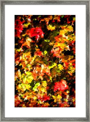 Abstract Fall Vine Framed Print by Olivier Le Queinec