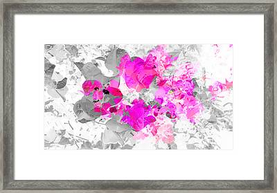 Abstract Floral No.4 Framed Print