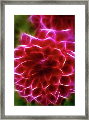 Abstract Flower Framed Print by Contemporary Art