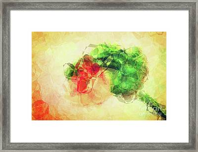 Abstract Flower V Framed Print by Angela Doelling AD DESIGN Photo and PhotoArt