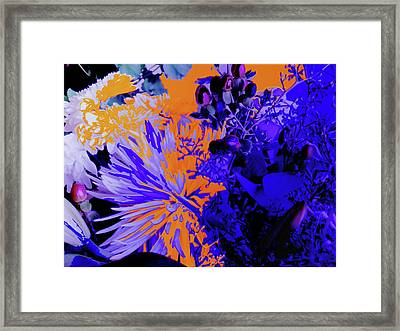 Abstract Flowers Of Light Series #1 Framed Print