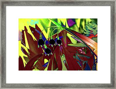 Abstract Flowers Of Light Series #10 Framed Print