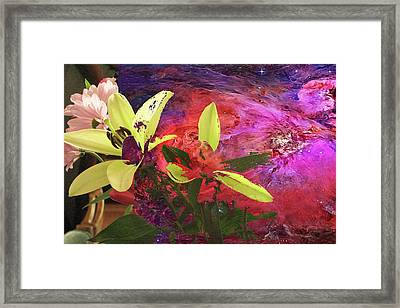 Abstract Flowers Of Light Series #16 Framed Print
