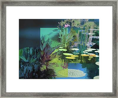 Abstract Flowers Of Light Series #20 Framed Print
