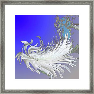 Abstract Flowers Of Light Series #4 Framed Print