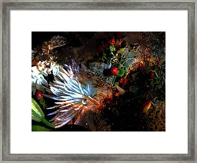 Abstract Flowers Of Light Series #5 Framed Print