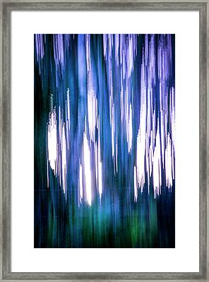Abstract Forest 2 Framed Print