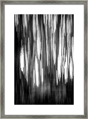 Abstract Forest 4 Framed Print