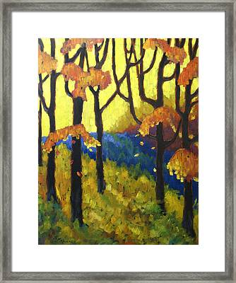 Abstract Forest Framed Print by Richard T Pranke