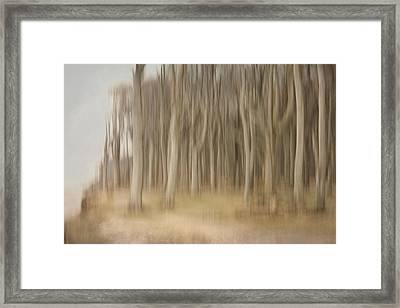 Abstract Ghost Forest Framed Print