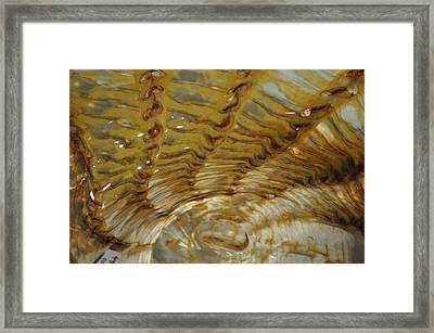 Abstract Glass 2 Framed Print by Marty Koch