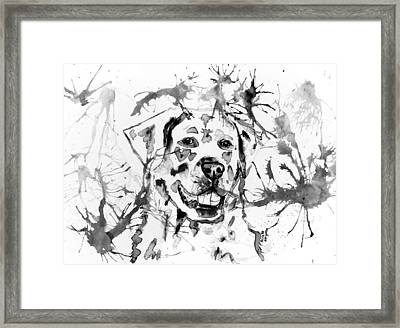 Abstract Ink - Golden Retriever In Black And White Framed Print by Michelle Wrighton