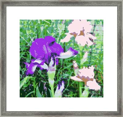 Abstract Irises Ll Framed Print