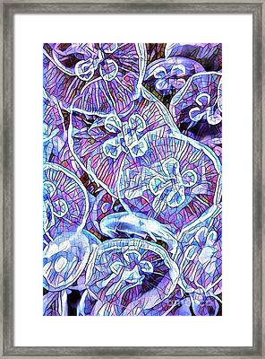 Abstract Jellyfish Framed Print by Amy Cicconi