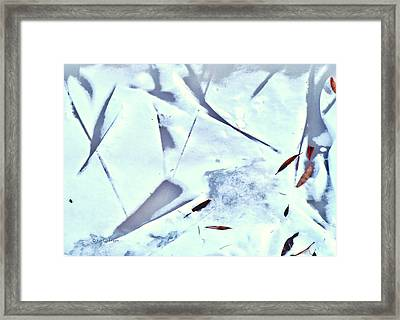 Framed Print featuring the photograph Abstract Leaf Patterns In Snow by Kae Cheatham