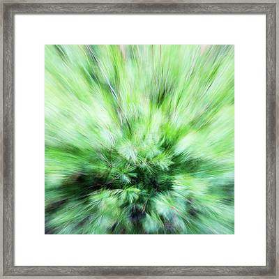 Abstract Leaves 7 Framed Print by Rebecca Cozart