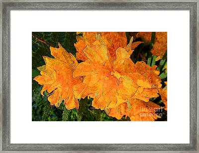 Abstract Motif By Yellow Daffodils Framed Print by Jean Bernard Roussilhe