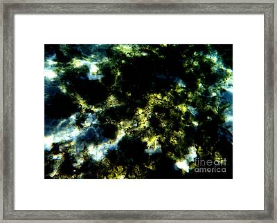 Abstract No.19 Framed Print by Mic DBernardo