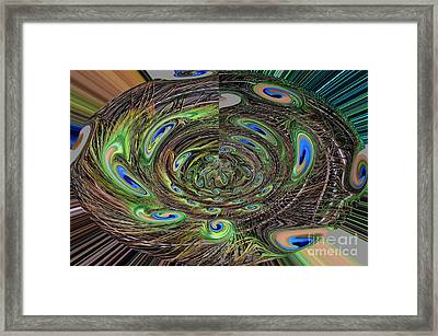 Abstract Of Peacock Feathers IIi Framed Print