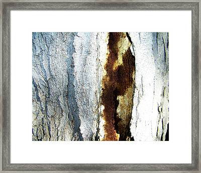 Framed Print featuring the photograph Abstract One by Lenore Senior
