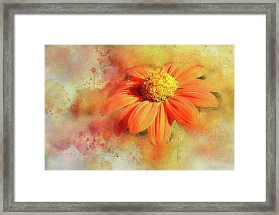 Abstract Orange Flower Framed Print