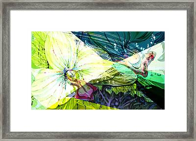 Abstract Orchid Framed Print by Mindy Newman