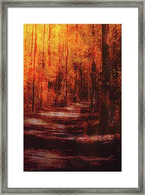 Abstract Path Framed Print
