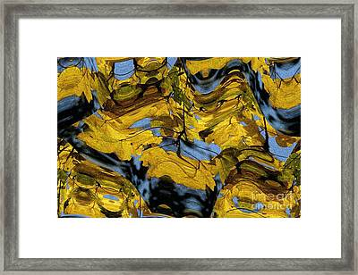 Abstract Pattern 4 Framed Print by Jean Bernard Roussilhe