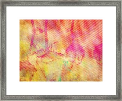 Framed Print featuring the photograph Abstract Photography 003-16 by Mimulux patricia no No