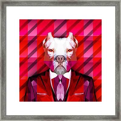 Abstract Pitbull 1 Framed Print by Gallini Design