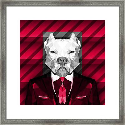 Abstract Pitbull 3 Framed Print by Gallini Design