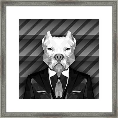 Abstract Pitbull 4 Framed Print by Gallini Design