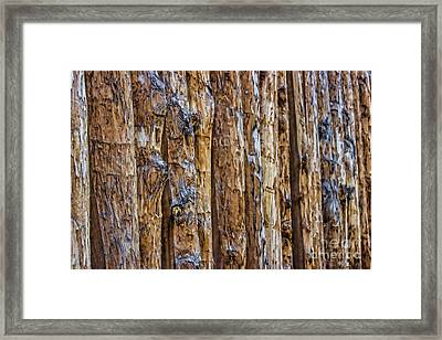Abstract Posts Framed Print