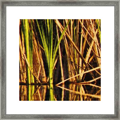 Abstract Reeds Triptych Top Framed Print by Steven Sparks