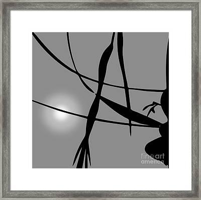 Abstract Reflection Framed Print by David Gordon