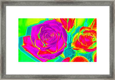 Blooming Roses Abstract Framed Print