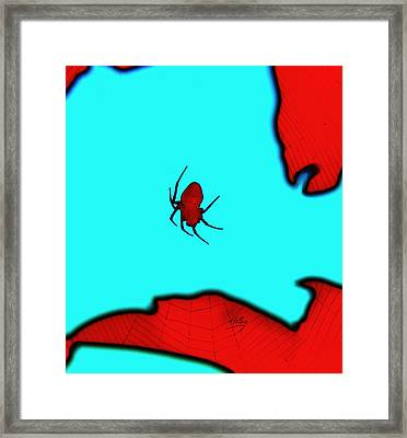 Abstract Spider Framed Print by Linda Hollis