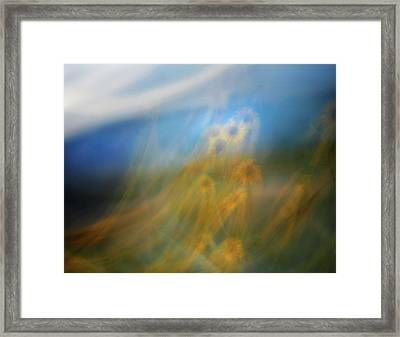 Abstract Sunflowers Framed Print by Marilyn Hunt