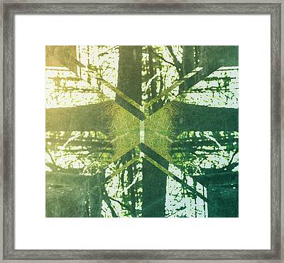 Abstract Trees Framed Print by Thubakabra